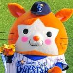 プロ野球2017年【横浜DeNAベイスターズ】スタメンと開幕投手予想