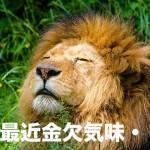 動物園_1491313298