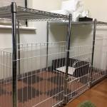 室内犬のサークルは自作(DIY)がベスト!狭い部屋でもスペース有効活用できるのでとても便利!